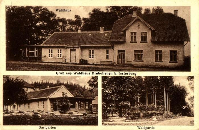 Gruss aus Waldhaus Drebolienen bei Insterburg