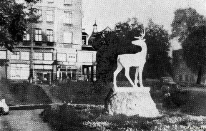 Бывшая площадь Вязов, Черняховск