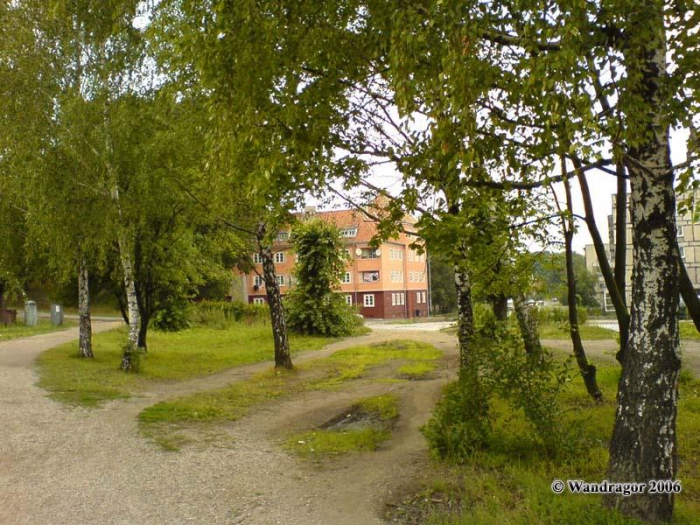 Пешеходная дорожка рядом с Замковым прудом, Черняховск