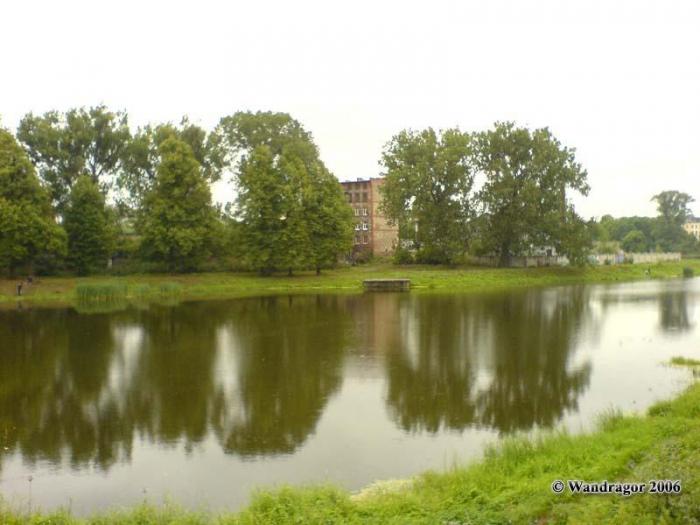 Замковый пруд, Черняховск