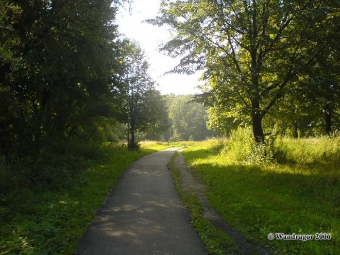 Пешеходная дорожка к навесному мосту, Черняховск