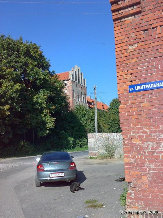 Замок Георгенбург (вид с улицы Центральной), Черняховск