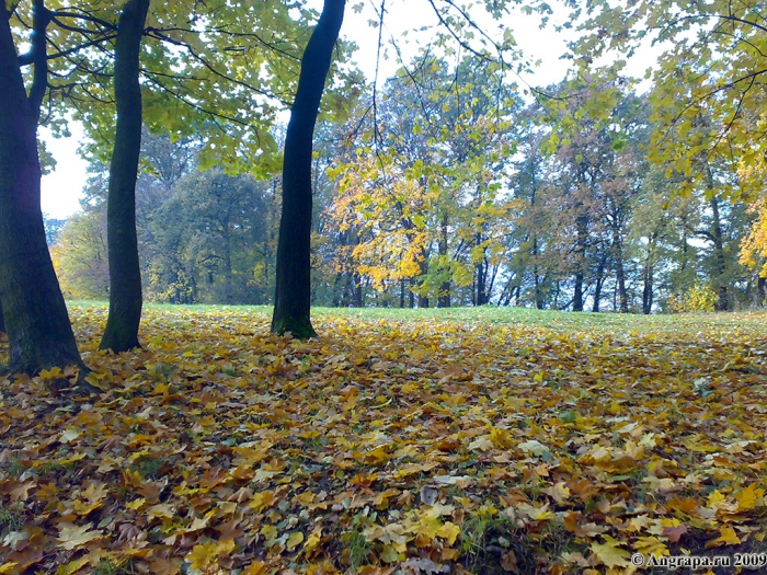 Парк рядом с памятником воинам, погибшим в боях у Инстербурга, Черняховск