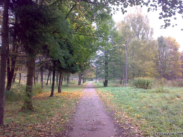 Пешеходная дорожка в Парке Победы, Черняховск