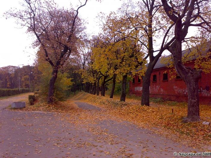 Спуск к городскому стадиону «Прогресс» (улица Спортивная), Черняховск