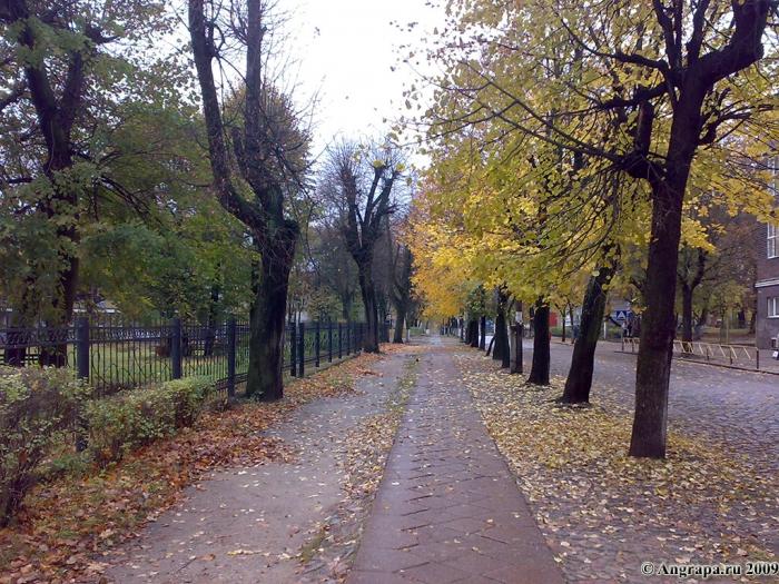 Улица Пионерская (напротив гимназии №2), Черняховск