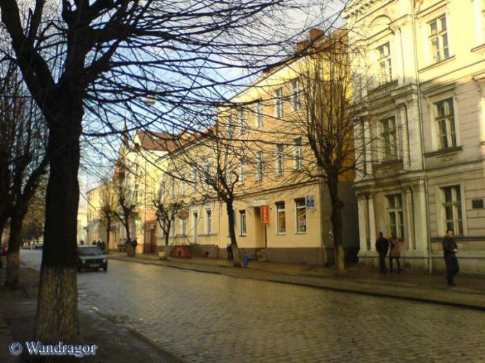 Улица Ленина (рядом со зданием вневедомственной охраны), Черняховск