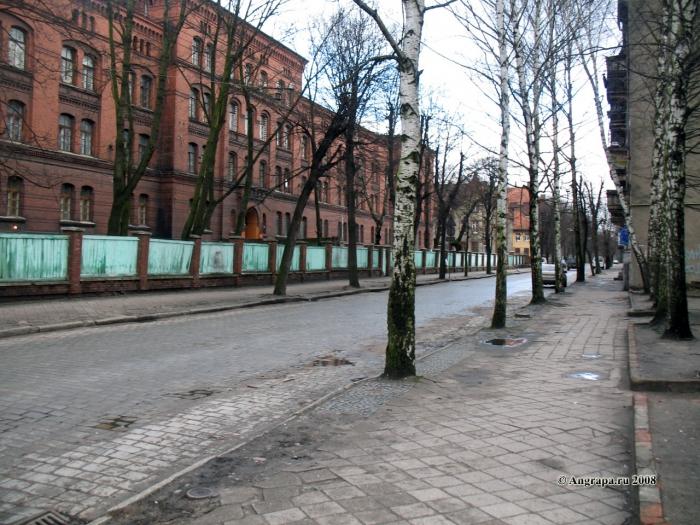 Улица Гагарина (рядом с Лицеем №7), Черняховск