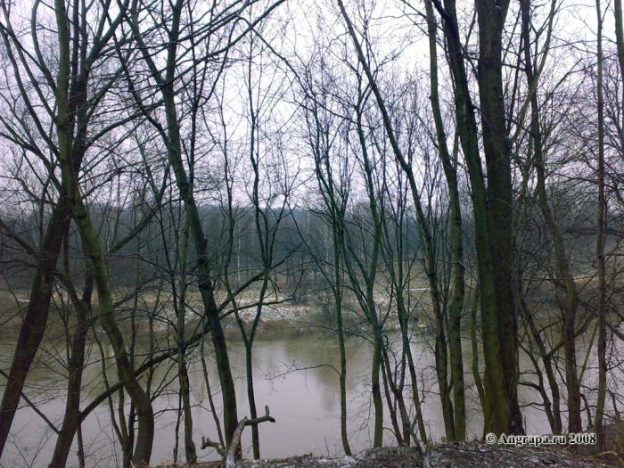 Вид на реку Анграпа (недалеко от арочного моста), Черняховск