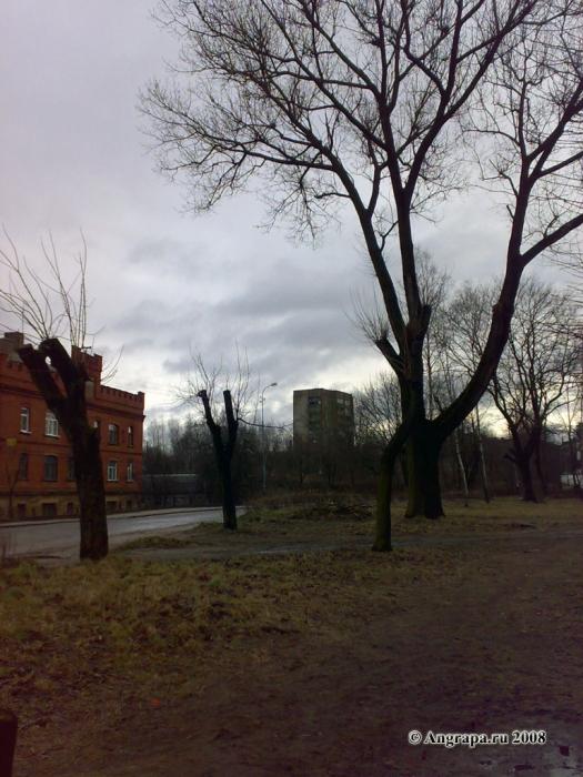 Улица Партизанская (вид на девятиэтажное здание), Черняховск