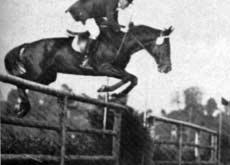Исполнилось 160 лет инстербургскому конному турниру